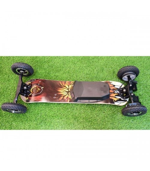 Off road Electric longboard 1650W