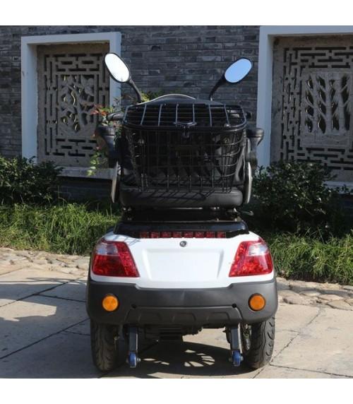Elektromobilität Roller 800W