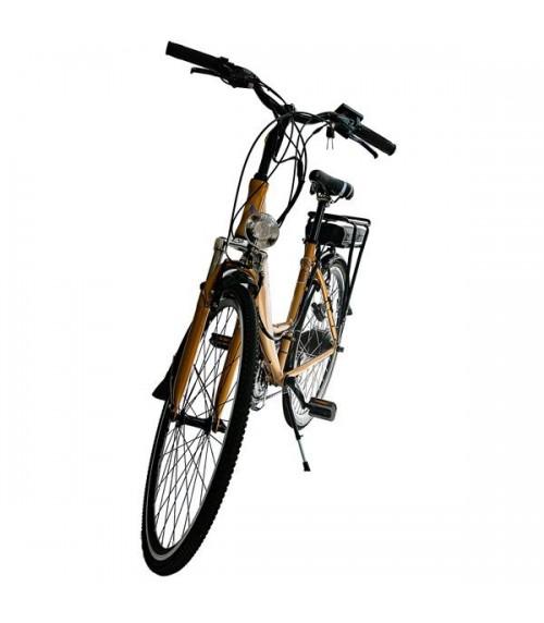 Electric Urban Bike