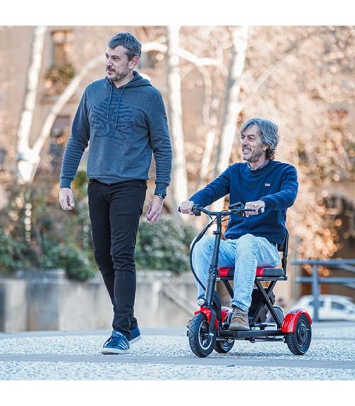 Scooter de Mobilité Pliable 300W