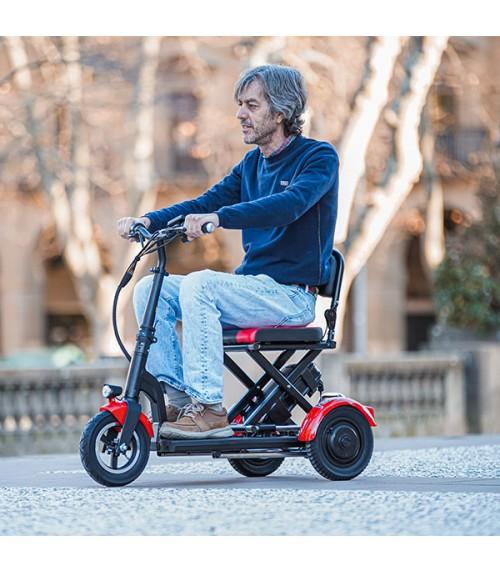 Scooter de Mobilidade Dobrável 300W