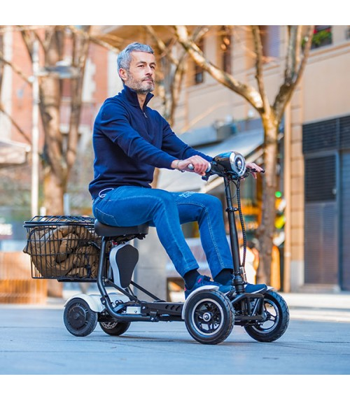 Electric Mobility Scooter 500W | TRAVEL|