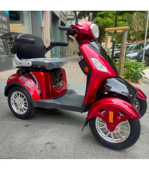 MOTO 800W Electric Mobility Scooter